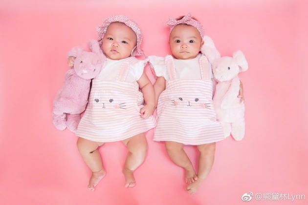 熊黛林晒双胞胎女儿萌照 网友:一个像爸一个像